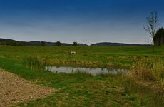 Projektování vodohospodářských staveb - stavba rybníku v Černé