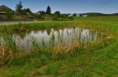 Projektování vodohospodářských staveb -Velké Meziříčí - stavba rybníku v Černé
