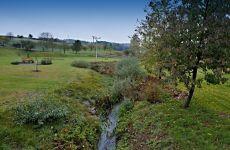 Projektování rybníků a vodohospodářských staveb - rybník Zálesná Zhoř